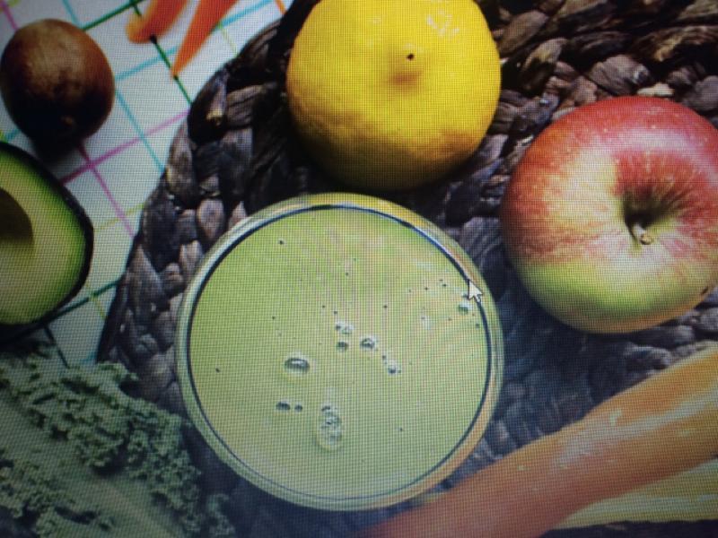Apple Veggie Smoothie Healthy Recipe