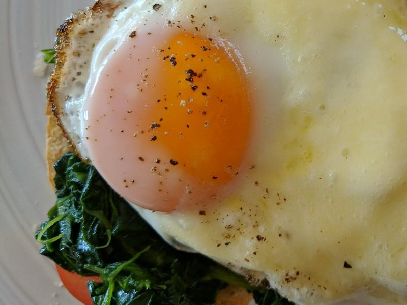 Open Faced Egg and Tomato Sandwich Healthy Recipe