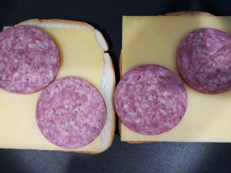 Salami and Gouda Sandwich Healthy Recipe