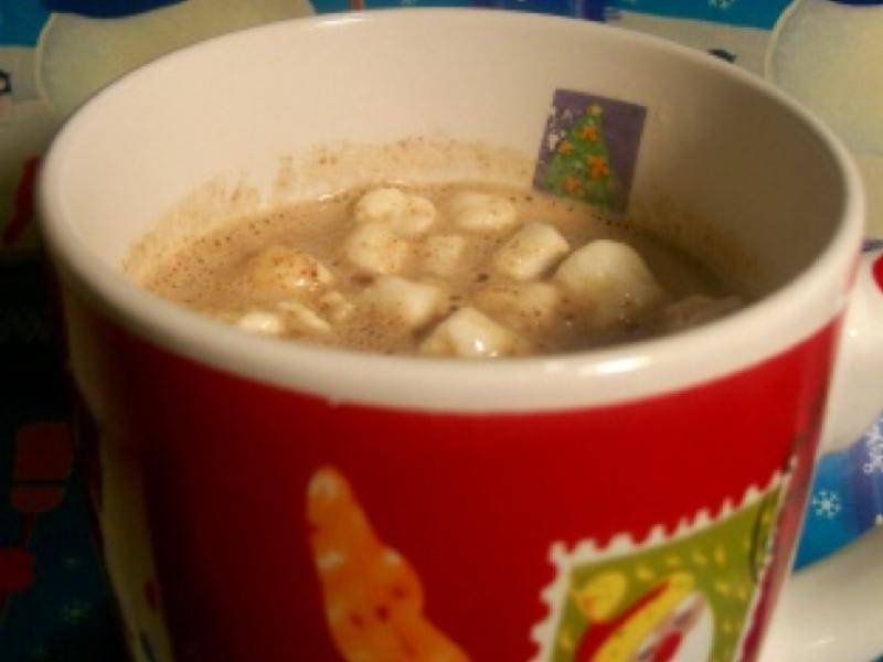 Warmed Cinnamon and Nutmeg Milk with Marshmallows Healthy Recipe