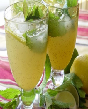 Basic Mojito Healthy Recipe
