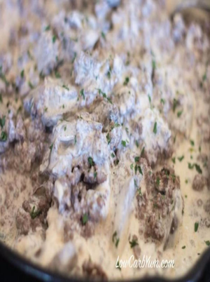 Low Carb Hamburger Stroganoff Healthy Recipe