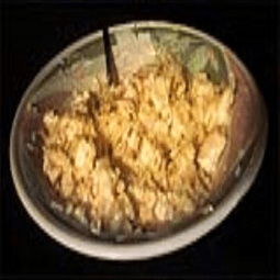 Penne Chicken and Mushroom